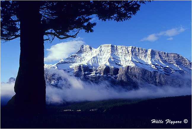 Mount Rundle  photography by Hälle Flygare