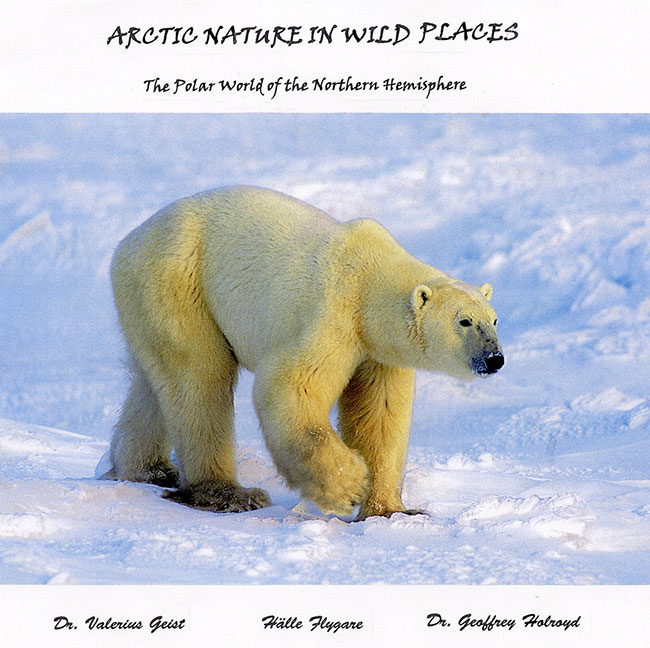 Arctic Nature in Wild Places by Halle Flygare book